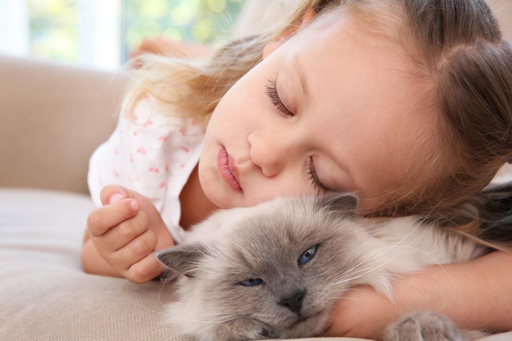 Le chaton et la petite fille