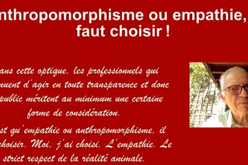 Anthropomorphisme : savoir résister et dire non !